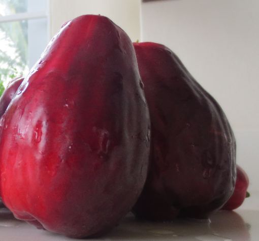 Picture of Red (Jamaican) Otateite Apple (each)