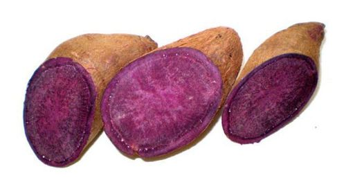 Picture of Jamaican Purple Yam (1lb/407g)