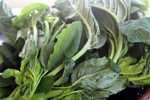 Picture of Callaloo - Local (1 Bunch - Large Bunch - Estimated 754 g/1.66 lbs)
