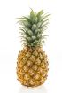 Shop online in Jamaica for Pineapple and other fruits and have it deli ered to your gate